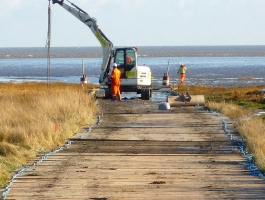 Ecologically Sensitive Marsh South of England